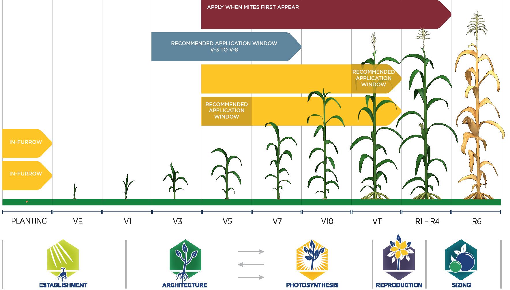 Corn & Soybean - UPL